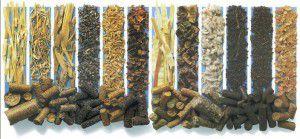 Пеллеты из различных пород древесины