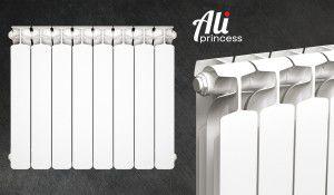 Радиаторы Ali Princess