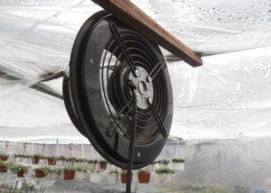 Автоматическая вентиляция в парнике